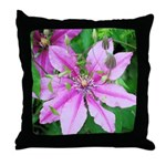 American Robin Fledgling Throw Pillow
