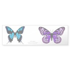 Butterfly Cut Outs 7