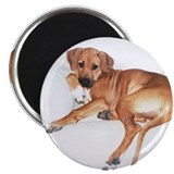 JUBA LEE RIDGEBACK 2.25&quot; Magnet (10 pack)
