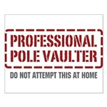 Professional Pole Vaulter Small Poster