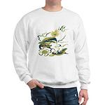 Chinese Dragons Sweatshirt