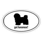 Got Havanese? Oval Bumper Stickers