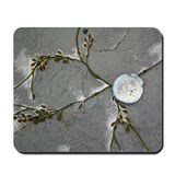 Shell and Seaweed Mousepad