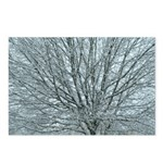 Crystal Branches Postcards (Package of 8)