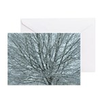 Crystal Branches Greeting Cards (Pk of 10)