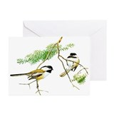 Chickadee Art Greeting Cards (Pk of 20)