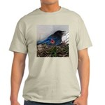 Baby Steller's Jays Light T-Shirt