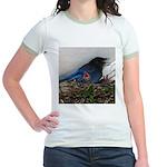 Baby Steller's Jays Jr. Ringer T-Shirt