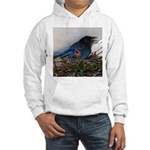 Baby Steller's Jays Hooded Sweatshirt