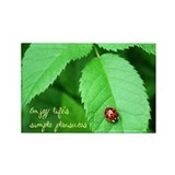 Ladybug-Life's Simple Pleasures Rectangle Magnet