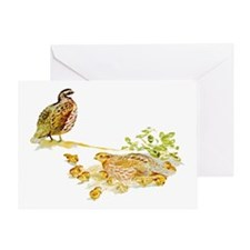 Bobwhite Quail Greeting Card