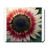 Red Sunflower Painting Mousepad