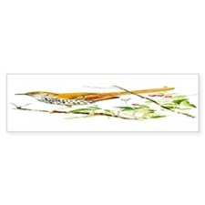 Brown Thrasher Bumper Sticker (50 pk)