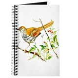 Brown Thrasher Journal