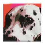 Dalmatian Dog Art Tile Coaster