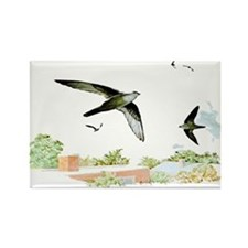 Chimney Swift Rectangle Magnet