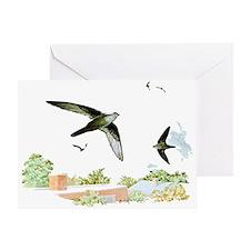 Chimney Swift Greeting Card