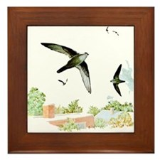 Chimney Swift Framed Tile