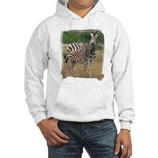 Zebra Mother & Child Hoodie