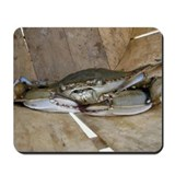 Maryland Blue Crab Mousepad
