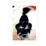 Nigel the Miniature Schnauzer Postcards (Package o