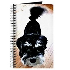 Nigel the Miniature Schnauzer Journal