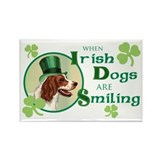 St. Patrick Irish Red and White Rectangle Magnet