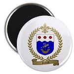 DAVID Family Crest Magnet