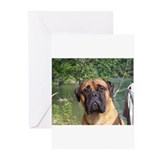 Funny Bullmastiffs Greeting Cards (Pk of 10)