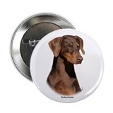 "Dobermann 9Y381D-162 2.25"" Button (100 pack)"