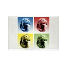 Curly Coat Pop Art Rectangle Magnet (100 pack)