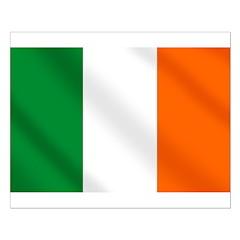 Irish flag of Ireland Posters