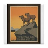 The National Parks Preserve W Tile Coaster
