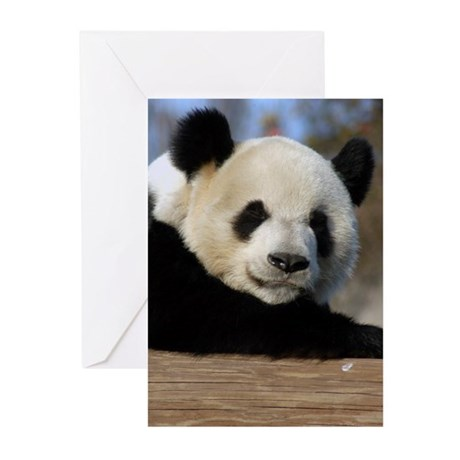 Giant Panda Greeting Cards (Pk of 10)