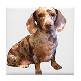 Spotty Dachshund Dog Tile Coaster