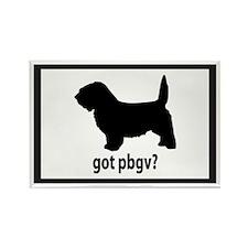 Got PBGV? Rectangle Magnet