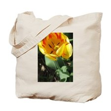 Cool Tulip bulbs Tote Bag