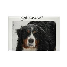 Got Snow? Rectangle Magnet