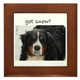 Got Snow? Framed Tile