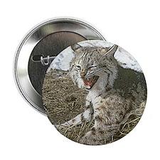 """Lynx Art 2.25"""" Button"""