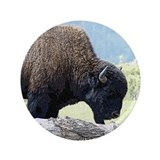 "Buffalo Art 3.5"" Button"
