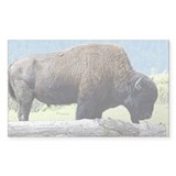 Buffalo Art Rectangle Decal