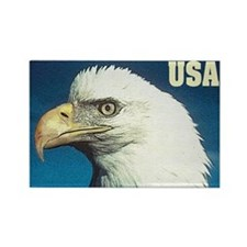 USA (Bald Eagle) Rectangle Magnet