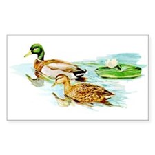 Mallard Ducks Rectangle Decal