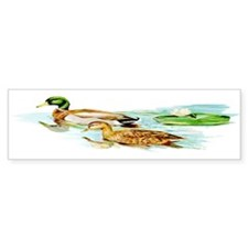 Mallard Ducks Bumper Sticker (10 pk)