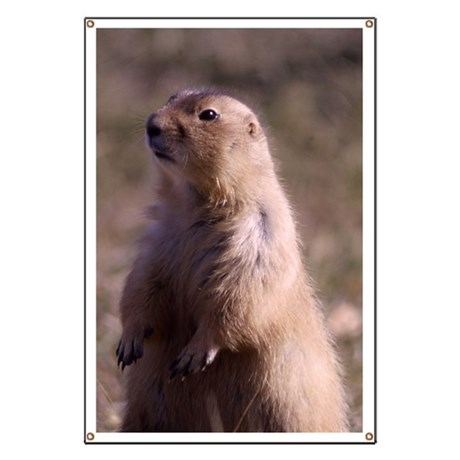 Prarie Dog Photo Banner
