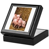 Piglets Photo Keepsake Box