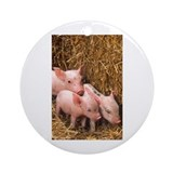 Piglets Photo Ornament (Round)