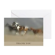 Pinto Horse THANK YOU note cards 10pk/blank/boxed