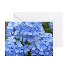 Cute Blue Greeting Card